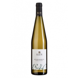 Muller Thurgau 1840 H.Lun 2015 cl 75 VINOpoint.it