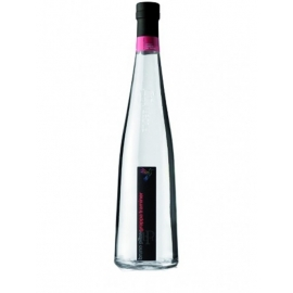 Grappa di Traminer Pilzer cl 50 VINOpoint.it