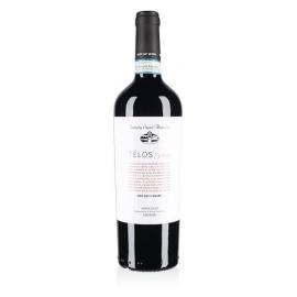 Rosso Télos Valpolicella Superiore Tenuta Sant'Antonio 2015 cl 75 VINOpoint.it